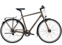 Diamant 882 H 50cm Umbra Metallic - Bike Maniac