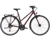 Diamant Elan 45cm Rauchtopas - Bike Maniac
