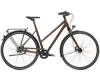Diamant Elan Elite G 45cm Umbra Metallic - Randen Bike GmbH