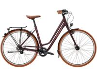 Diamant 885 45cm Rauchtopas - Bike Maniac