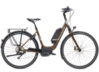 Diamant Zagora+ 45cm Umbra Metallic - Bikedreams & Dustbikes