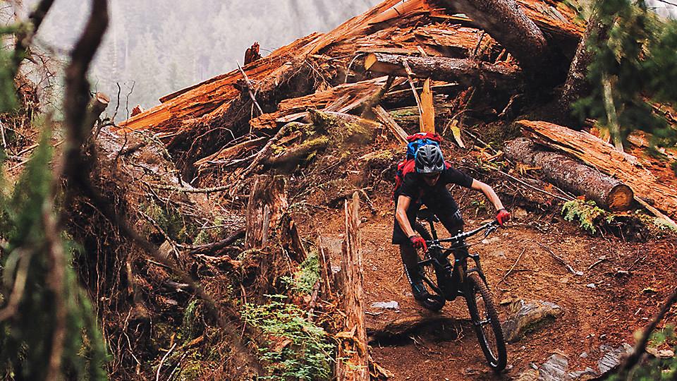 29er Mountain Bikes Trek Bikes