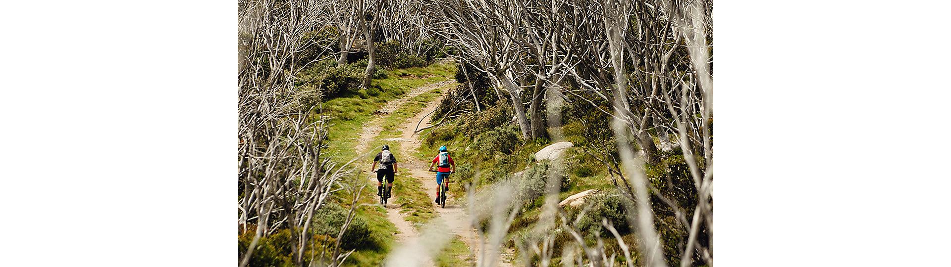 Aluminum mountain bikes | Trek Bikes