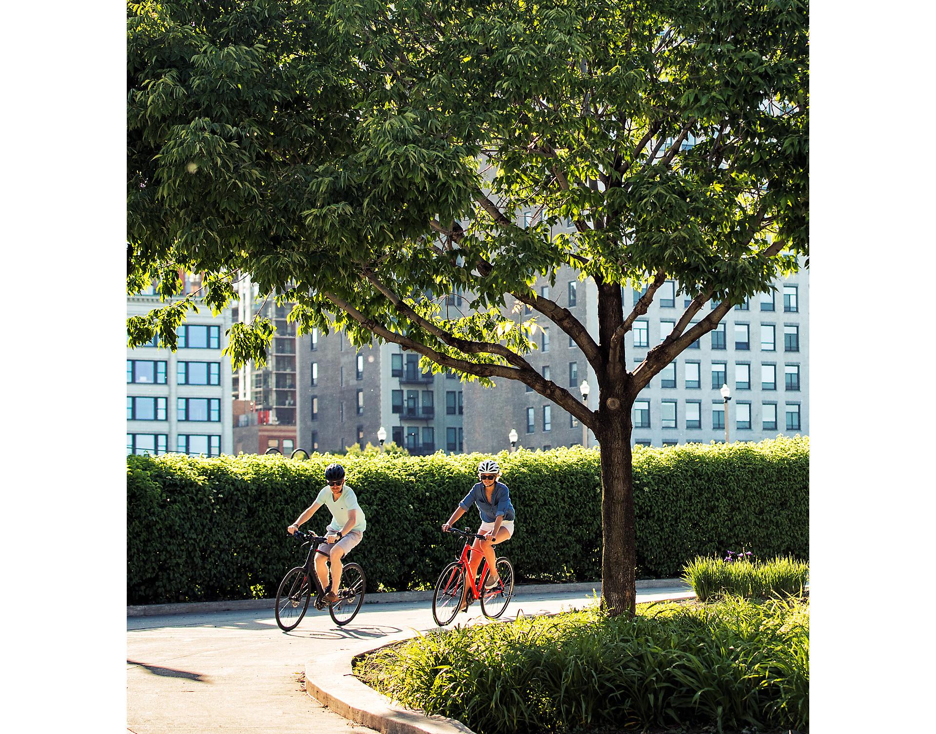 Hybrid bikes   Trek Bikes