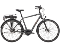 Trek District+ 1 300WH - 2021