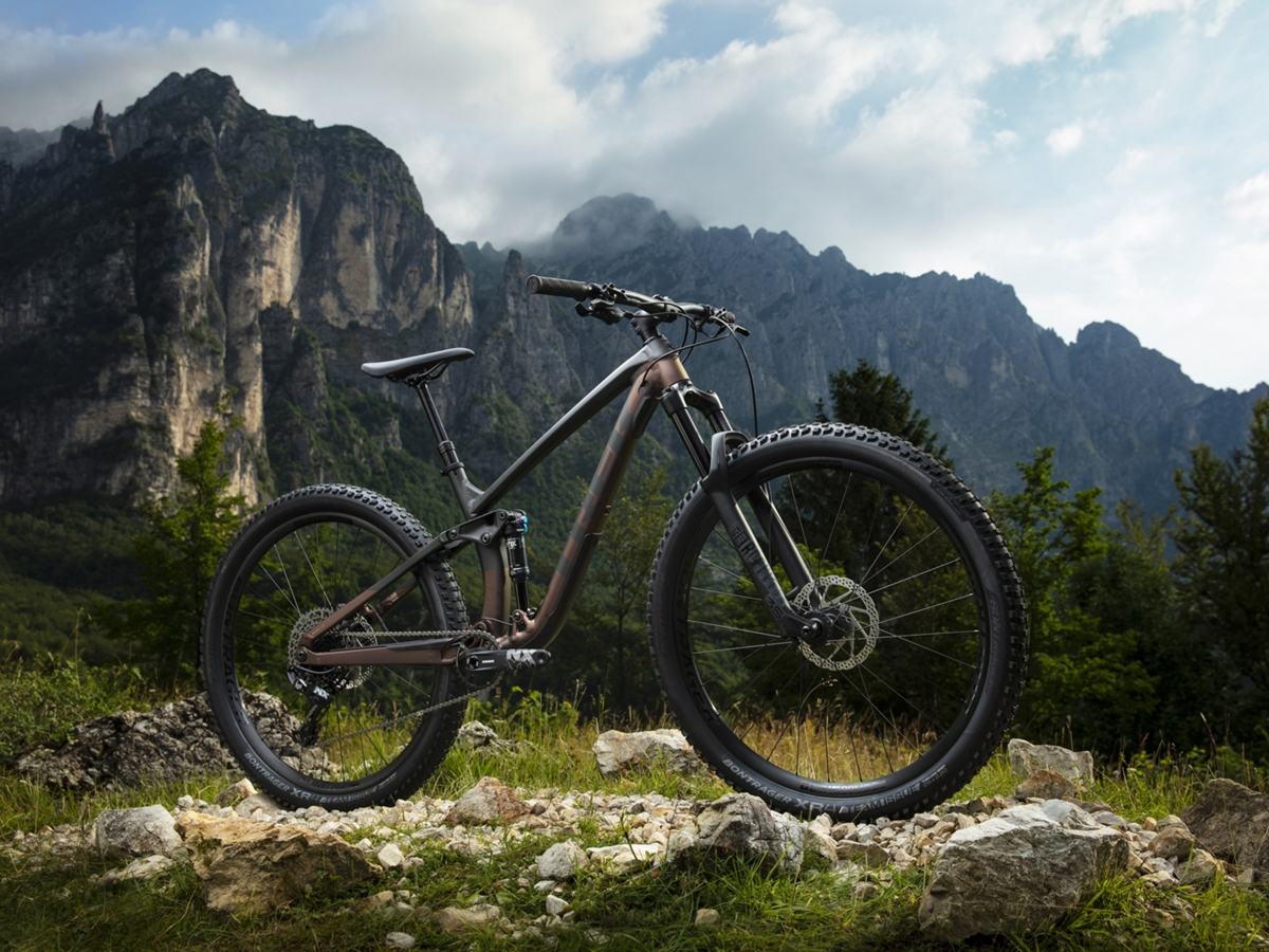 Fuel EX 7 | Trek Bikes (FR)