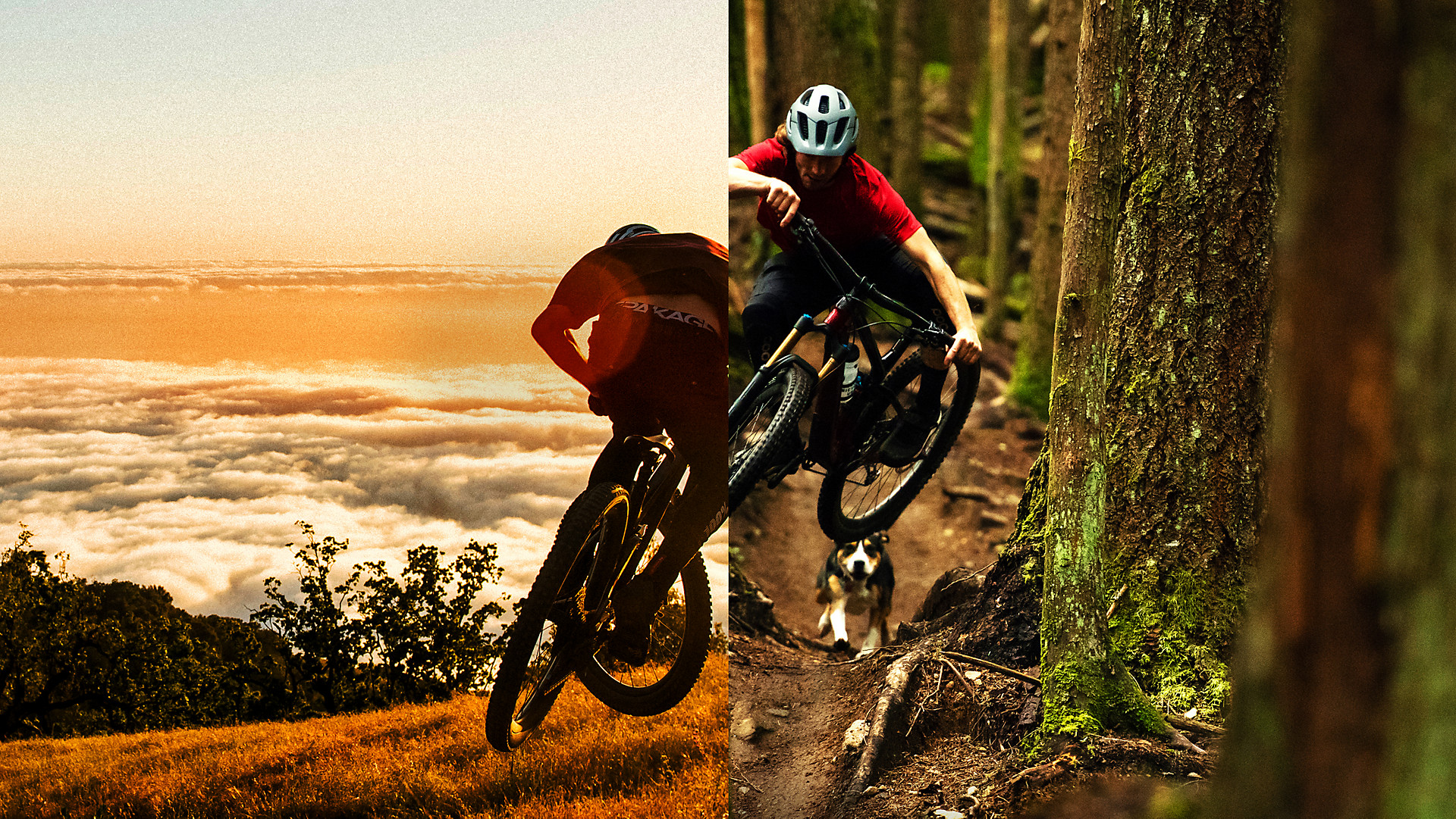 Trek Bikes The World S Best Bikes And Cycling Gear