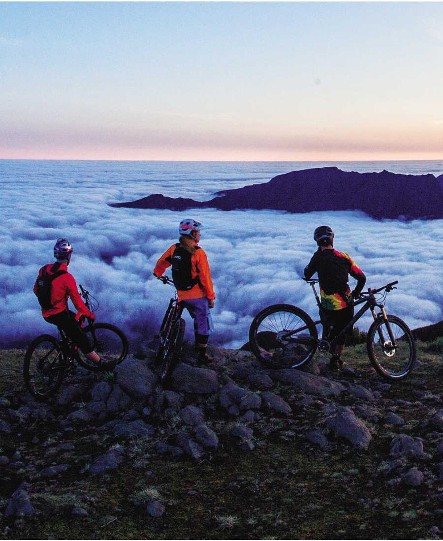 Summer Sale Trek Bikes