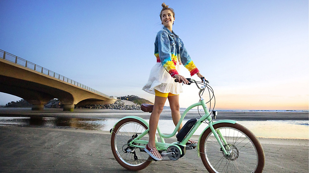 Electra Townie Go! 8D electric bicycle