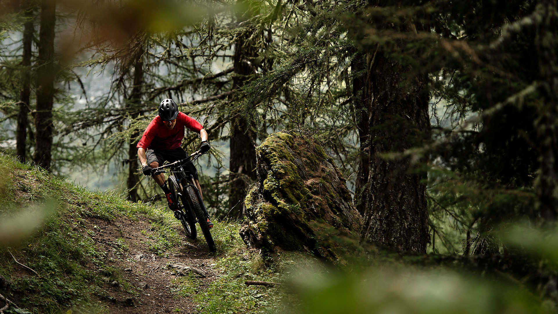Trail Mountain Bikes >> Trail Mountain Bikes Trek Bikes