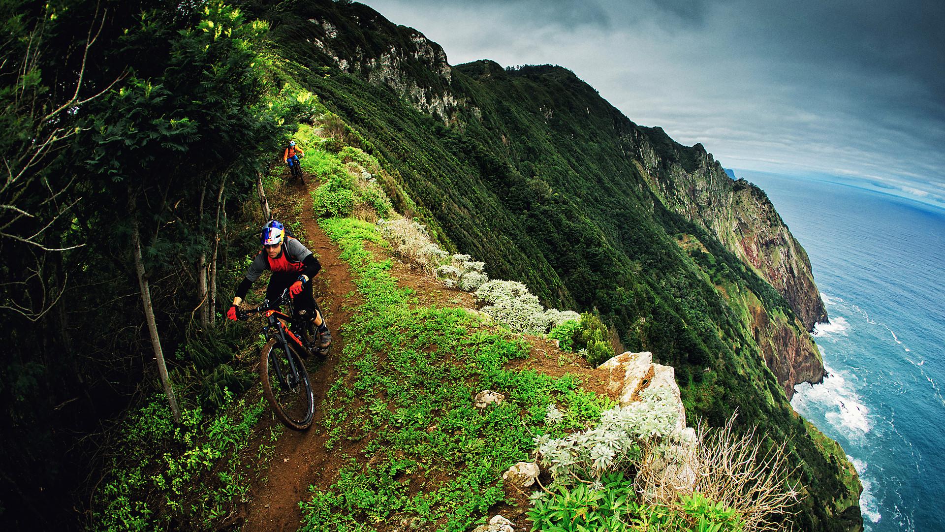 バイク trek bikes jp
