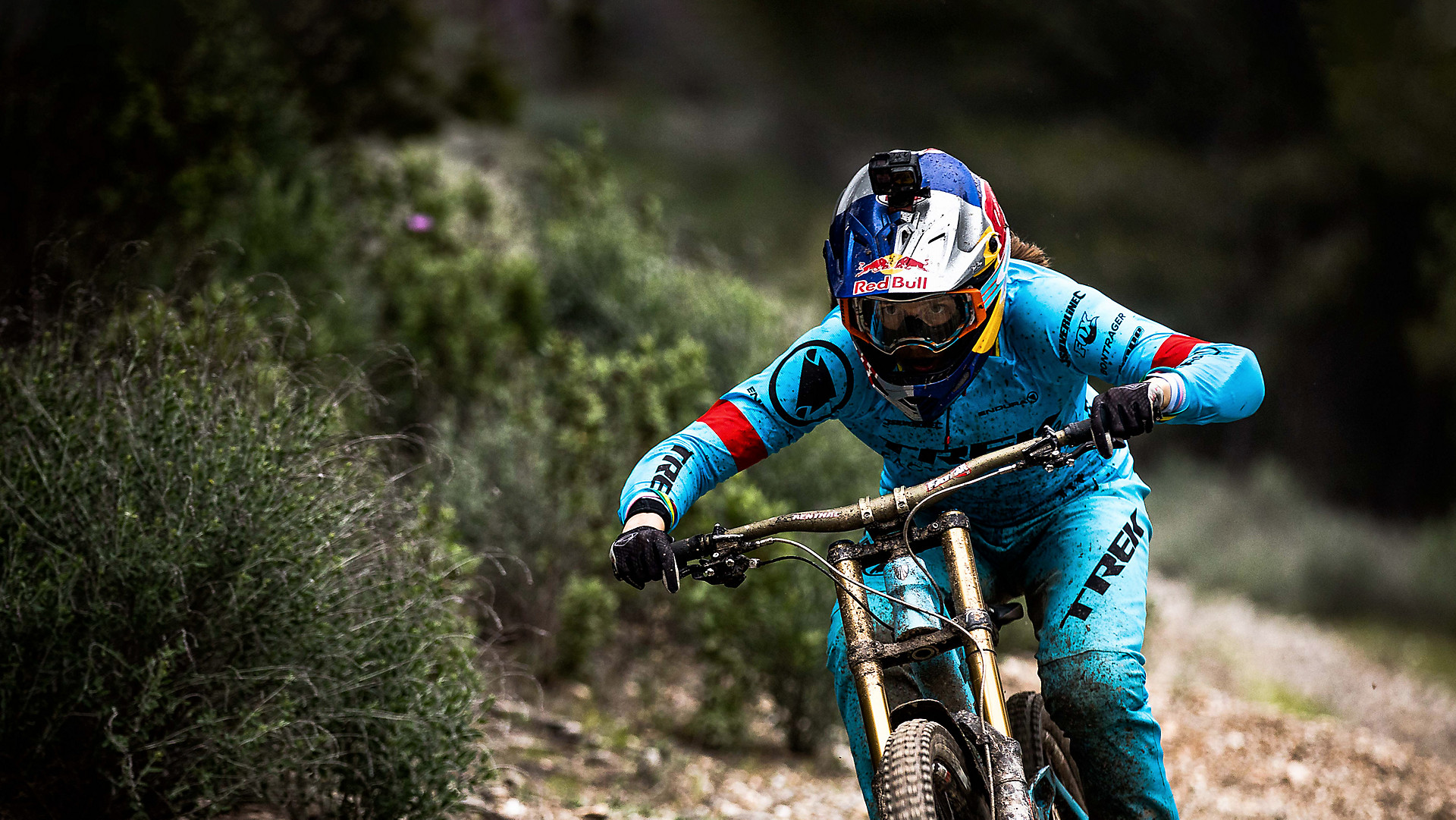 Downhill Mountainbikes Trek Bikes De