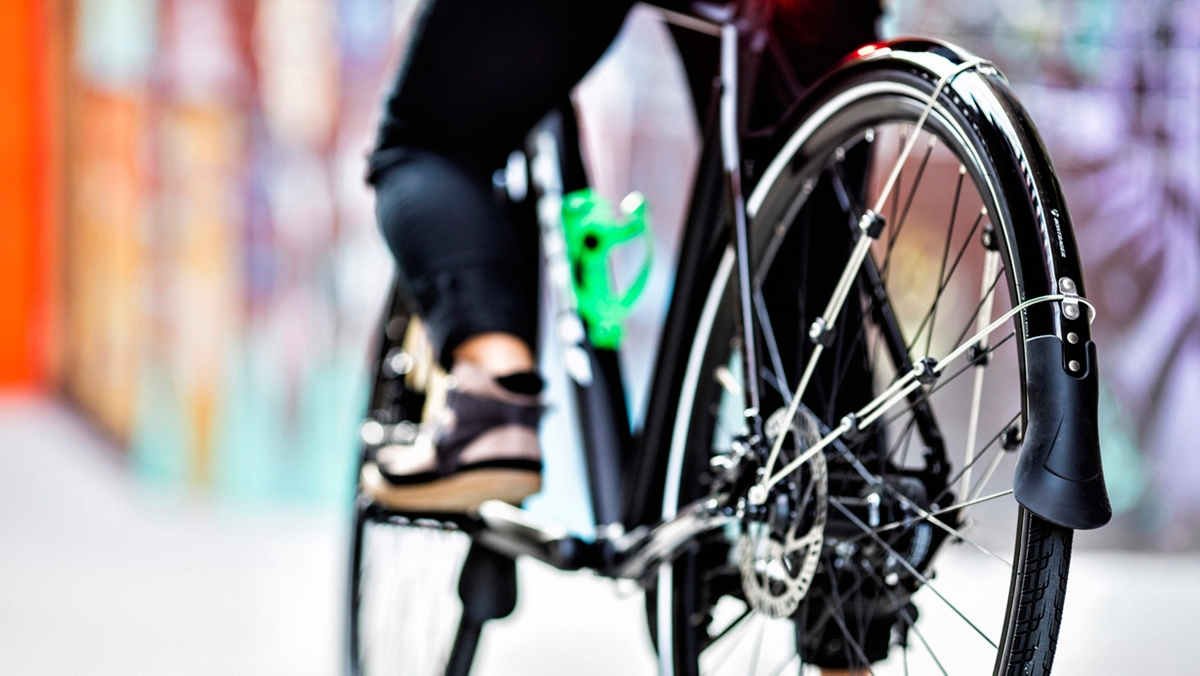 Bike Fenders Trek Bikes